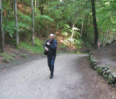 restaurant lillering skov